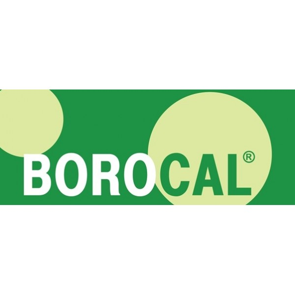 Borocal