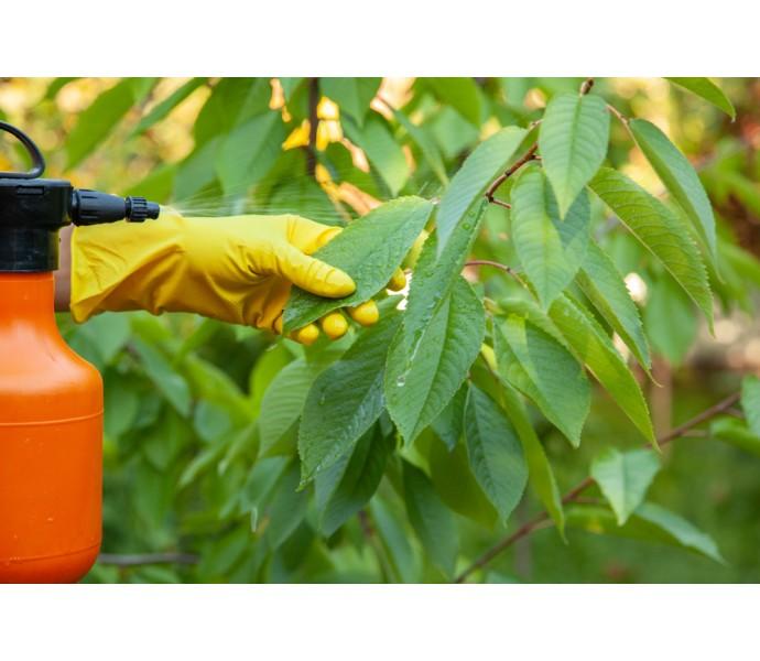 Cum sa aplici pesticidele corect