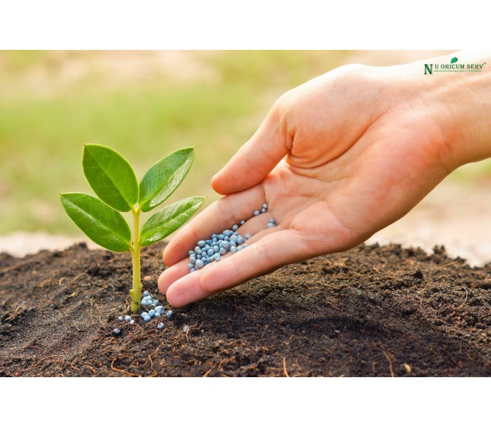 Procesul de fertilizare al solului - cum realizati totul fara pic de ajutor?
